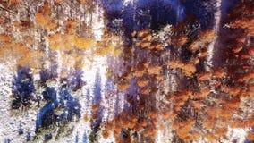 Metragem do zangão de uma montanha nevado na queda no nascer do sol video estoque