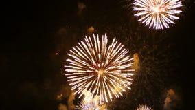 a metragem 4K do fim acima do festival colorido real dos fogos-de-artifício ilumina-se acima no céu na cena escura da noite para  video estoque