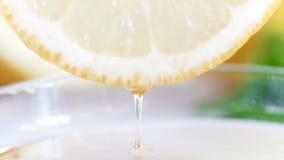 Metragem 4k macro do suco que deixa cair da fatia fresca do limão no frasco filme