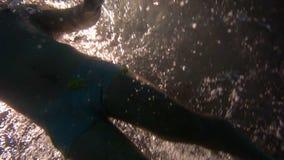 Metragem subaquática da parte inferior do movimento lento da natação atlética nova do homem na associação vídeos de arquivo