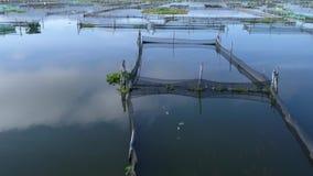 Metraggio aereo del villaggio del lago dell'acqua video d archivio
