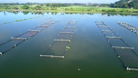 Metraggio aereo del villaggio del lago dell'acqua stock footage