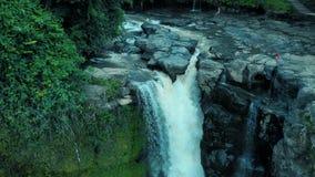 Metraggio aereo della cascata meravigliosa con acqua di schiumatura, grandi rocce e le piante verdi sul mondo di viaggio di Bali  archivi video