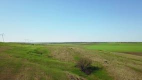 Metraggio aereo della macchina fotografica che sorvola la valle pittoresca, i campi e le colline verdi, le scogliere rocciose e l archivi video
