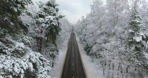 Metraggio aereo della strada di inverno attraverso la foresta archivi video