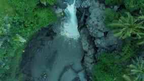 Metraggio aereo di bella cascata con acqua di schiumatura, grandi rocce e le piante verdi sul mondo di viaggio di Bali Indonesia  archivi video