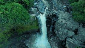 Metraggio aereo di bella cascata con acqua di schiumatura, grandi rocce e le piante verdi sul mondo di viaggio di Bali Indonesia  stock footage