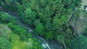 Metraggio aereo di bello paesaggio della cascata, rocce, foresta, fiume della montagna sul mondo di viaggio di Bali Indonesia 4k stock footage