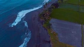 Metraggio aereo di bello paesaggio della spiaggia dell'oceano con acqua blu, cielo nuvoloso impressionante di tramonto, piante ve video d archivio