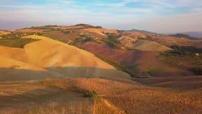 Metraggio aereo, vigne splendide sul tramonto in Toscana, Italia, 4K archivi video