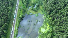 Metraggio del fuco che mostra un treno del carico che passa un paesaggio verde con i prati e un'abetaia sopra Sulla mano destra stock footage