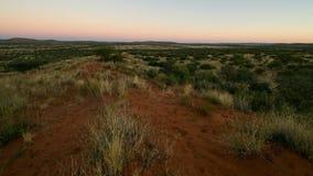 Metraggio del fuco della Kalahari stock footage