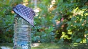 Metraggio del hd del fondo dell'albero del cappello dell'acqua di bottiglia nessuno stock footage