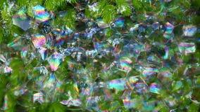 Metraggio del hd del fondo delle bolle di sapone dell'albero di abete archivi video