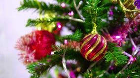 Metraggio dell'albero di abete per i chirstmas decorativi archivi video