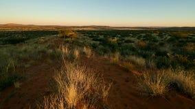 Metraggio della Kalahari video d archivio
