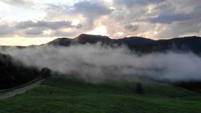 Metraggio epico ispiratore di stupore del fuco Nuvole del galleggiante della foschia sopra le piantagioni di tè contro il contest stock footage