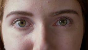 Metraggio vicino degli occhi verdi della giovane donna dello zenzero che esaminano macchina fotografica, macro colpo stock footage