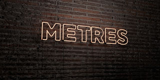 METRES -Realistic Neon Sign on Brick Wall background - 3D rendered royalty free stock image Royalty Free Stock Photography