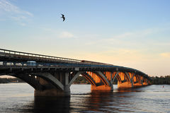 Metro bridge Royalty Free Stock Images