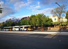 Metro de bus is hoge frequentie, het netwerk van de hoge capaciteitsbus in Adelaide royalty-vrije stock foto's