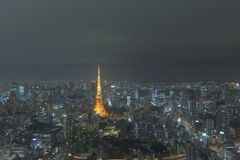 Aerial night view of tokyo tower from Mori tower Royalty Free Stock Images
