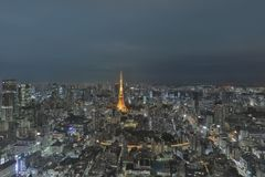 Tokyo tower as seen with skyline from Metropolitan Royalty Free Stock Image