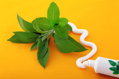 Metropolitana di sapore della menta del dentifricio in pasta Immagini Stock Libere da Diritti
