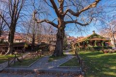 Metsovo-Stadt Epirus Griechenland Lizenzfreies Stockbild