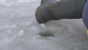 Metspöet i vinter fångade fisken från under isen Fiskarna sätta sig fladdra att frysa i plågor av snön - skytteslut stock video