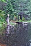 Metta in bacino a Leonard Pond ha individuato in Childwold, New York, Stati Uniti Fotografia Stock Libera da Diritti