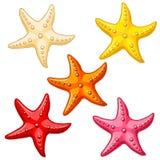 Metta cinque stelle marine di colore su bianco Fotografia Stock