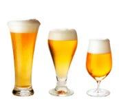 Metta con differenti vetri della birra su bianco Fotografia Stock Libera da Diritti