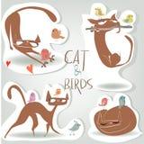 Metta con il gatto e gli uccelli Fotografie Stock