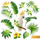 Metta con le foglie, i fiori e gli uccelli tropicali Fotografie Stock
