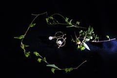 Metta degli orecchini della perla Fondo, sveglio fotografia stock libera da diritti