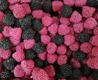 metta dei dolci sotto forma di lamponi immagine stock