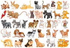 Metta del carattere dell'animale domestico illustrazione vettoriale