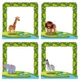 Metta del confine animale illustrazione vettoriale