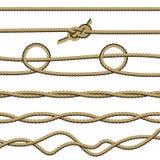 Metta delle corde 7 illustrazione vettoriale