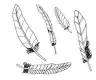 Metta delle piume decortive doodles illustrazione vettoriale