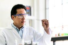 Metta dello sviluppo chimico e della farmacia del tubo nel concetto della tecnologia del laboratorio, della biochimica e della ri fotografia stock libera da diritti