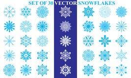 Metta di 30 fiocchi di neve di vettore illustrazione vettoriale