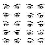 Metta di vari tipi di occhi femminili illustrazione di stock