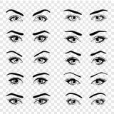 Metta di vari tipi di occhi femminili illustrazione vettoriale