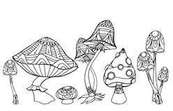 Metta i funghi con il modello di boho Modello di scarabocchio illustrazione di stock