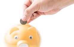 Metta i soldi al porcellino salvadanaio Fotografia Stock Libera da Diritti