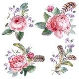 Metta il mazzo d'annata dell'acquerello delle piume delle rose Immagine Stock