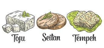 Metta l'alimento del vegetariano e del vegano Tofu, Seitan, Tempeh Immagini Stock Libere da Diritti