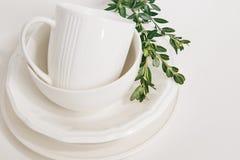 Metta l'eucalyptus del ramo decorato tazza dei piatti dei piatti Immagini Stock Libere da Diritti